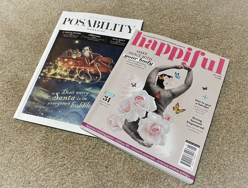 Photo showing the front covers of the two magazines referred to in the article.