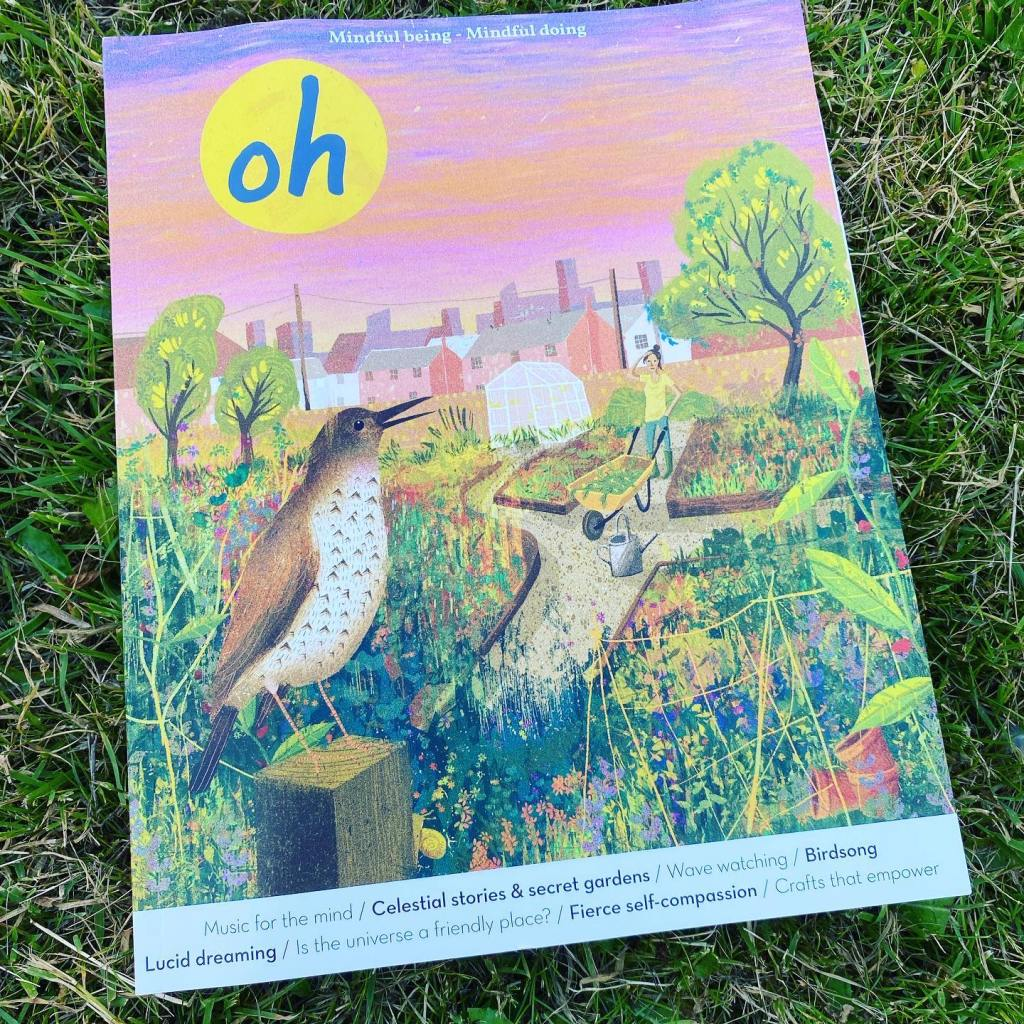 Photo shows the front cover of Oh magazine, with an illustration of a bird and a vibrant summer garden, with a pink and orange sky in the background.